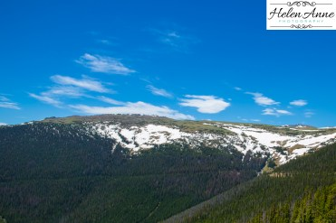 Rocky Mountain-9043-33