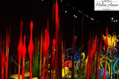 chihuly-seattle-2377-30