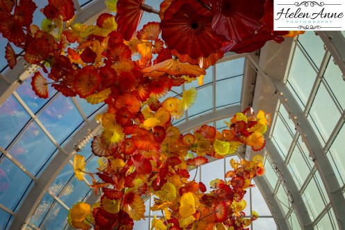 chihuly-seattle-2433-66