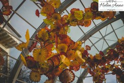 chihuly-seattle-2451-72