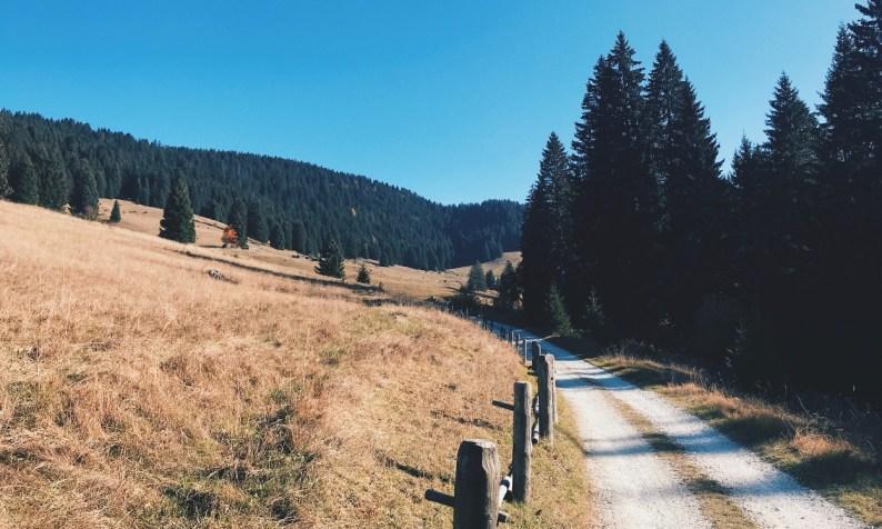 Sunday Hangover No. 57 Trentino