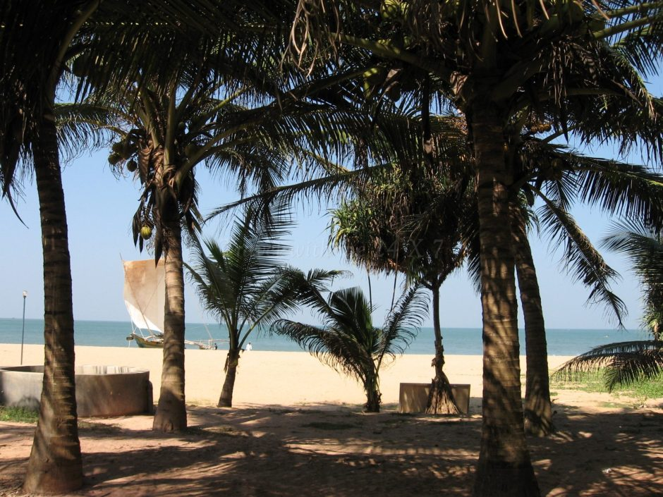 Tropical Beaches of Negombo