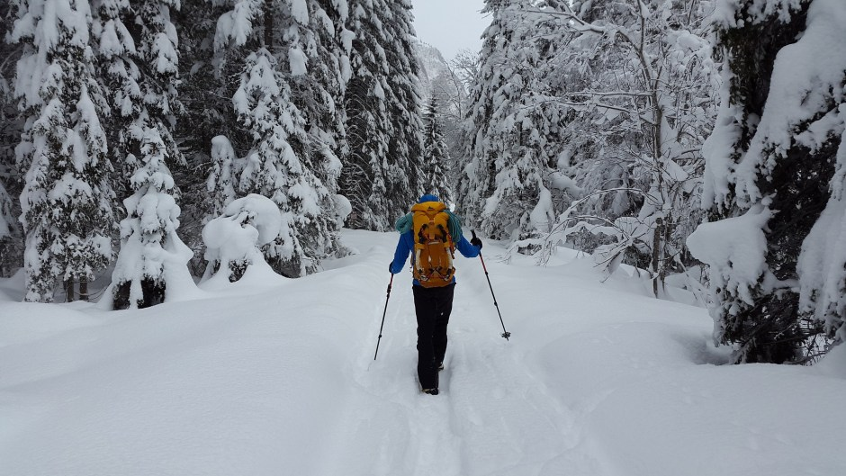 5 Winter Hiking Skills You Need to Embrace to Level Up Your Experience