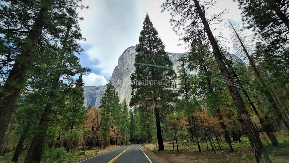 11 Best Places To Visit In California With Family & Kids