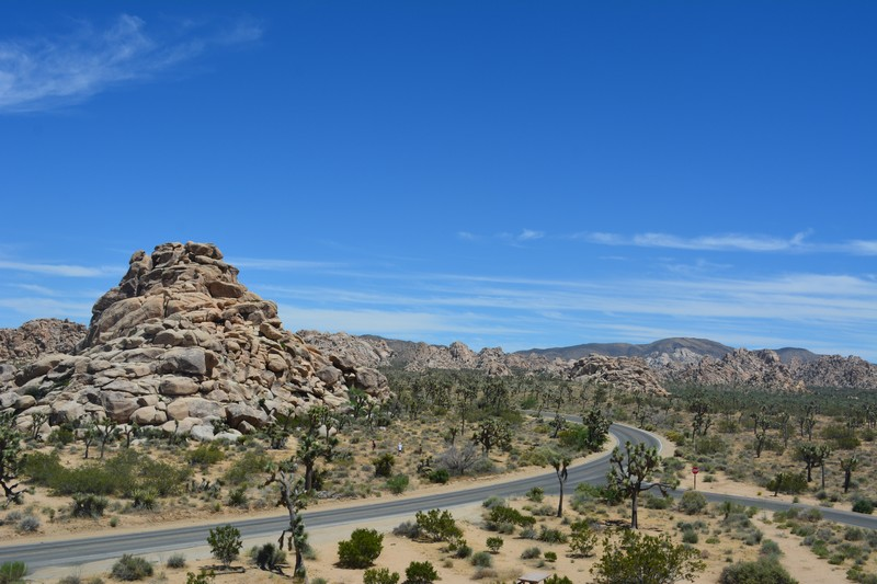 Route traversant Joshua Tree National Park
