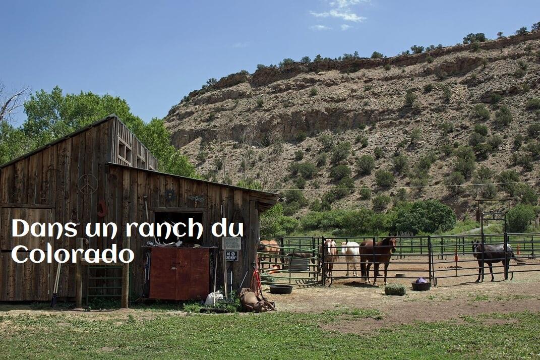 Ranch 2 - Voyage dans un ranch américain du Colorado