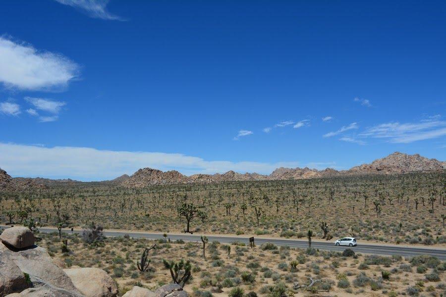 3 78 - Les parcs nationaux USA