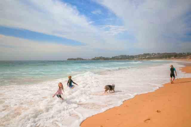 Travel With Meraki - Wamberal Beach -Dog Friendly Beach - Central Coast - NSW - Australia