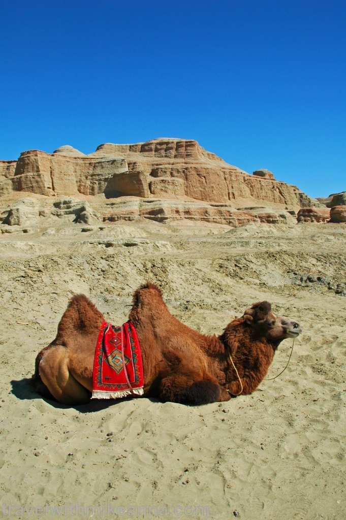 中國 新疆 北疆 魔鬼城 旅遊 攝影 照片 遊記 china xinjiang photo photography travel