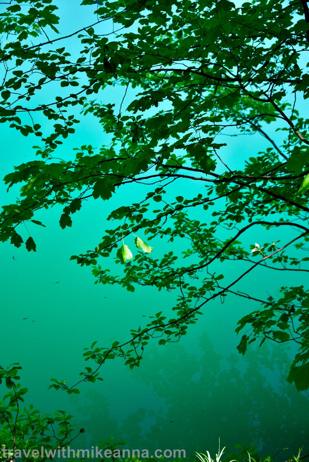 Croatia Plitvice National Park Travel Photography 克羅埃西亞 十六湖國家公園 旅遊 攝影