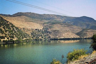 The Linha do Douro… or where it all began