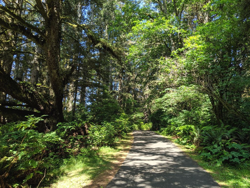 cape disappointment state park trails