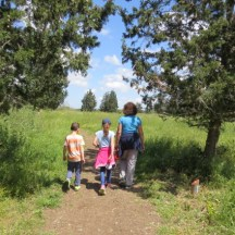 מסלול הליכה בפארק הנדיב