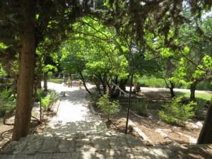 ראש פינה - גן הברון