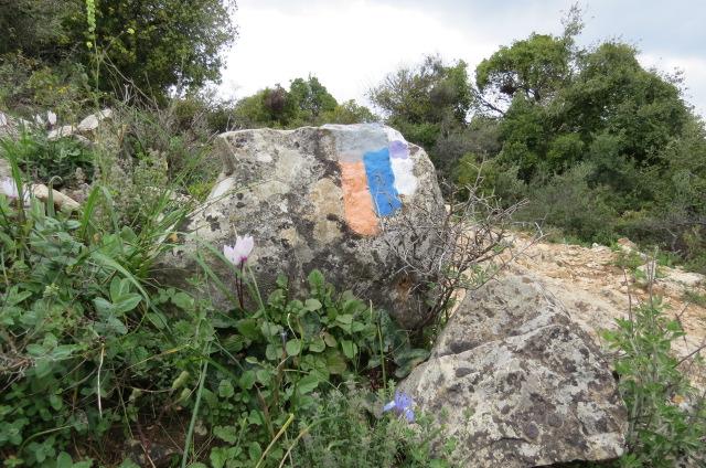 לאורך שביל ישראל בהר מירון