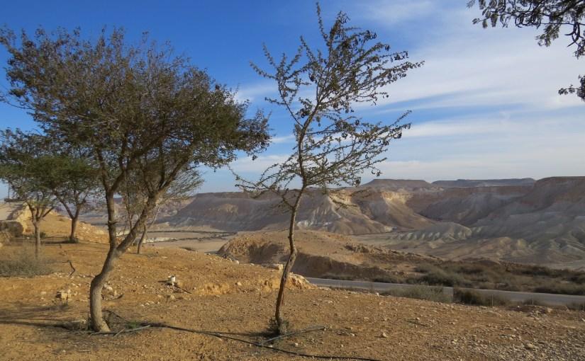 יום טיול בדרך לאילת: שדה בוקר ומצפה רמון