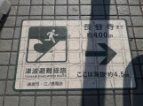 שלטי אזהרה מצונאמי בקמאקורה