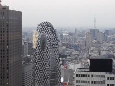 תצפית מבניין המטרופוליטן בטוקיוו