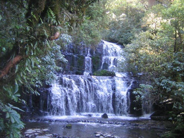 בעלי חיים, נופים ותופעות גאולוגיות בקצה הדרומי של ניו זילנד