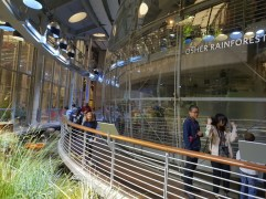 מוזיאון המדע בסן פרנסיסק