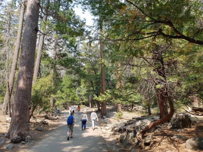 מסלול ההליכה למפלי ברידוייל