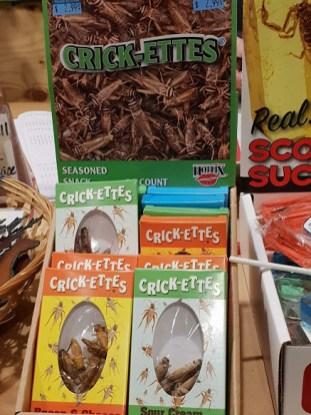 חטיפי חרקים בוויליאמס