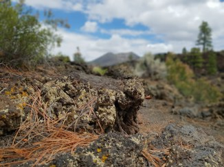 Sunset crater volcano national park