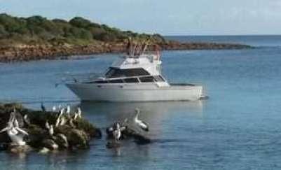 Emu Bay Fishing Charter Vessel Kangaroo Island