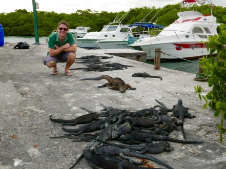 Chris The Travel Buddy and the Galapagos iguanas