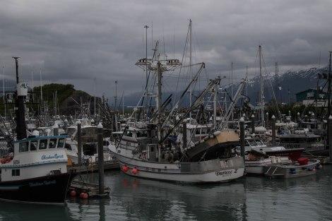 Alaska-01.jpg