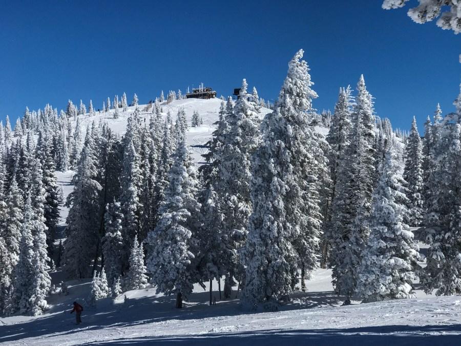 Snow-02.jpg