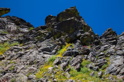 Trail-06.jpg