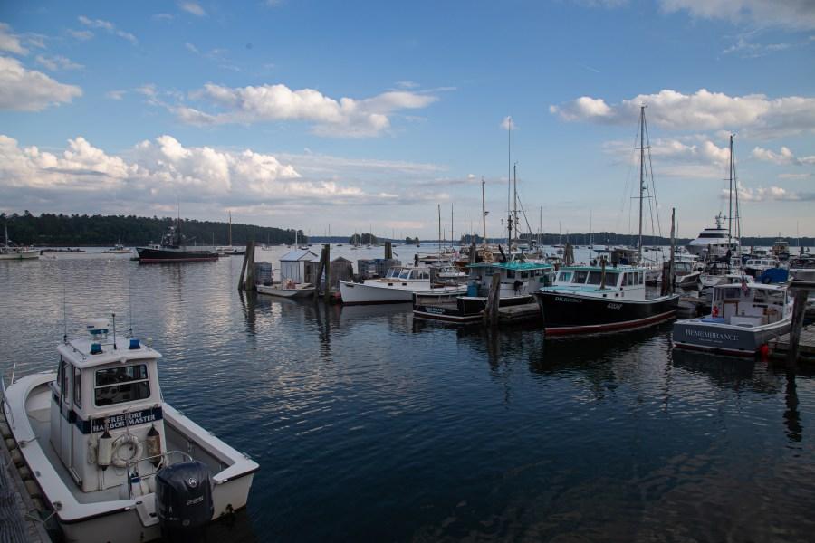 Harbor-02.jpg