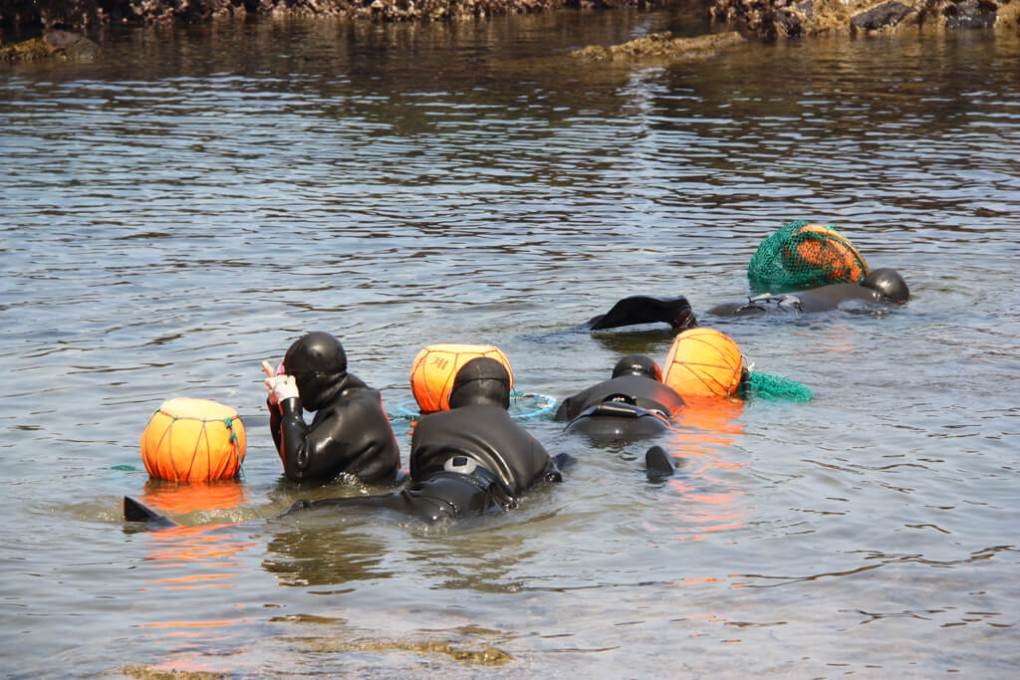 Korean Female Haenyeo Divers
