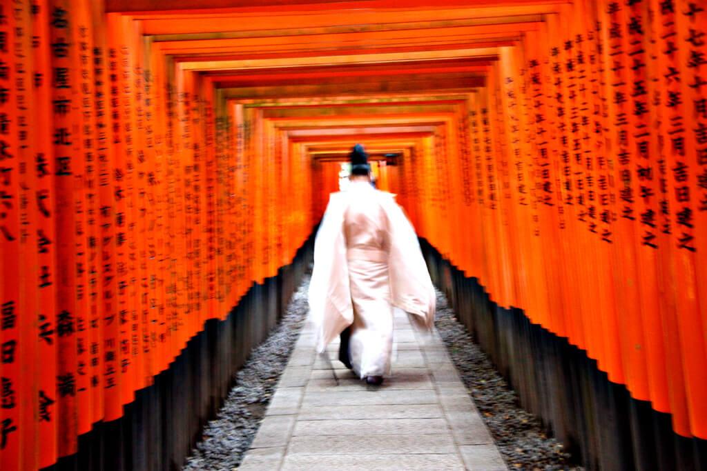 Japanese Hustle at Fushimi Inari-Taisha