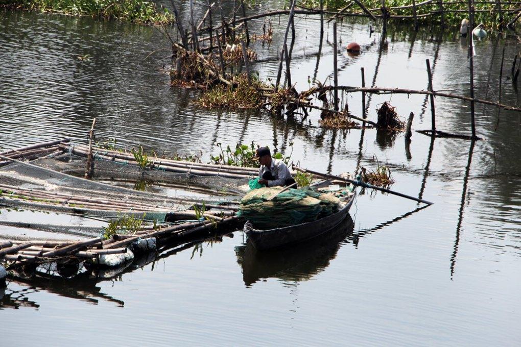 Vietnam Boat Gardening