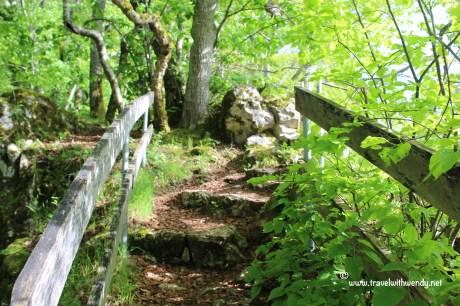 TWW - trails in Wildenstein