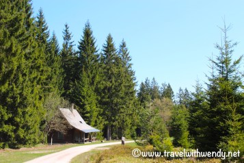 Hiking near the Black Forest