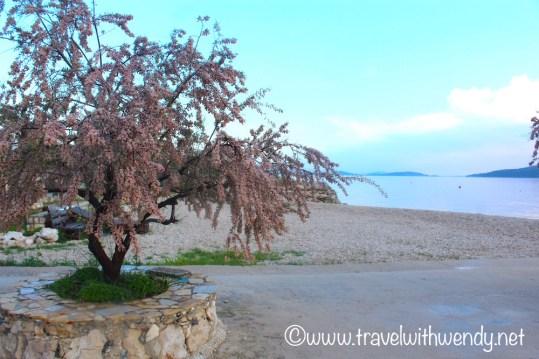 Morning walks in Zablaće
