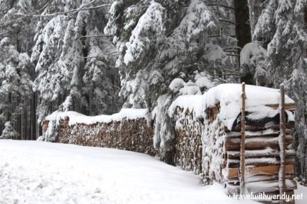 Wood in Winter