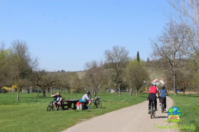 Biking and hiking in Marbach, Germany