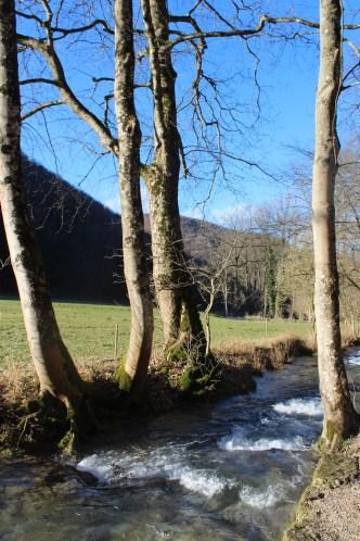 Mountain streams - hiking Bad Urach