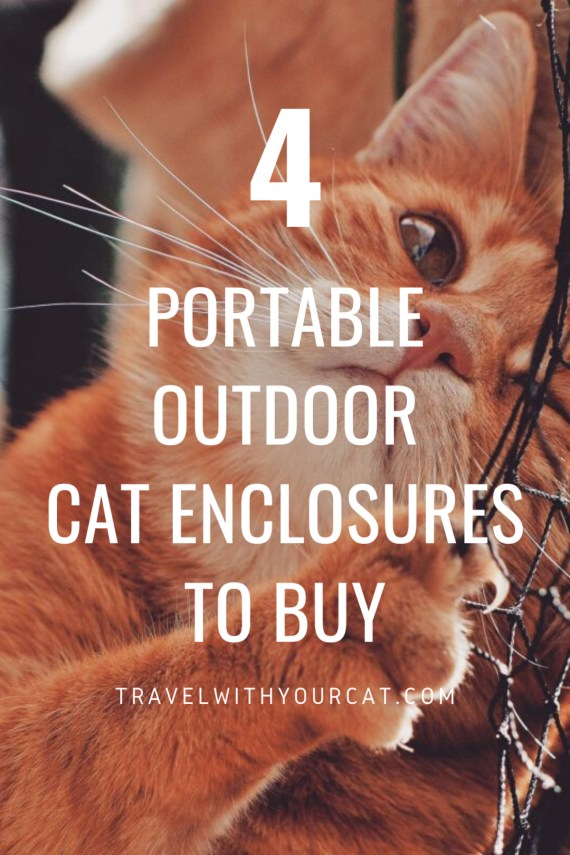 4 Portable Outdoor Cat Enclosures to Buy