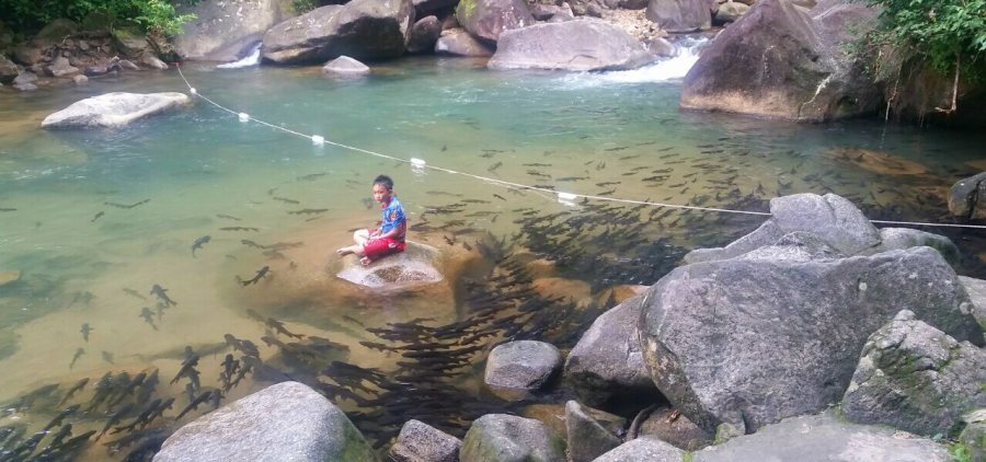 Chantaburi with kids