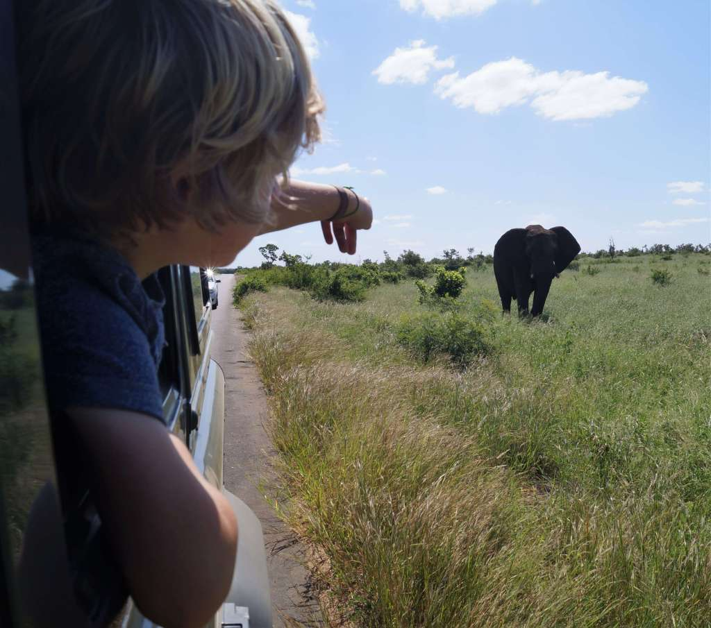 The TRUTH about doing an African safari with kids