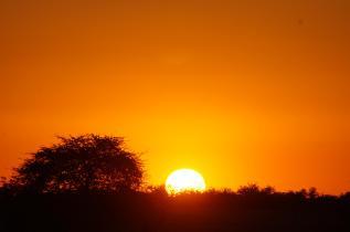 Etosha best safari kids
