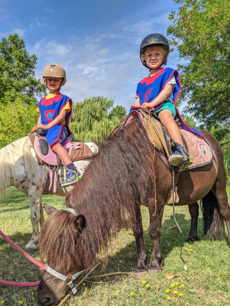 two boys on ponies