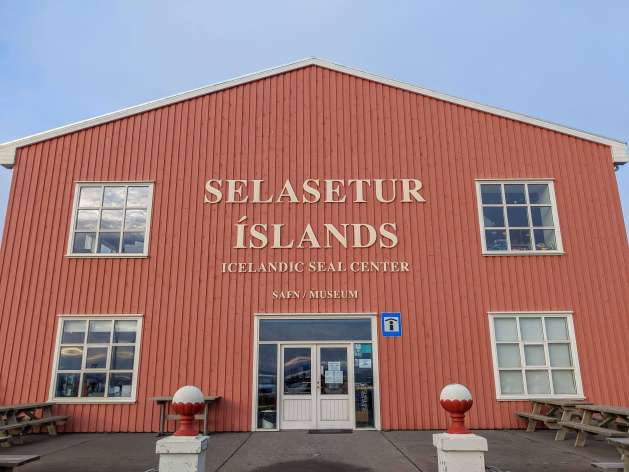 front of the display at the Icelandic Seal Centre