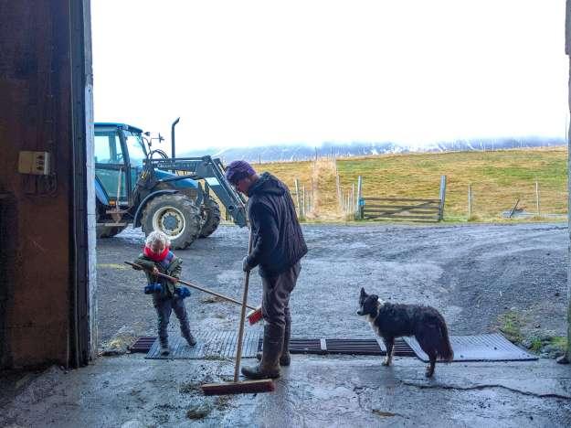 sweeping the barn at Stóra Ásgeirsá