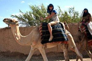 camel ride in marakesh